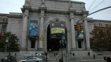 american-museum-of-natural