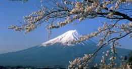 Giới thiệu chung về du học Nhật Bản