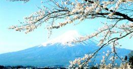 Tuyển sinh du học Nhật Bản 2012