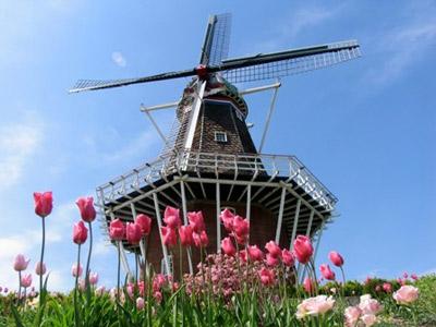 Du học Hà Lan: Học bổng ngắn hạn NFP