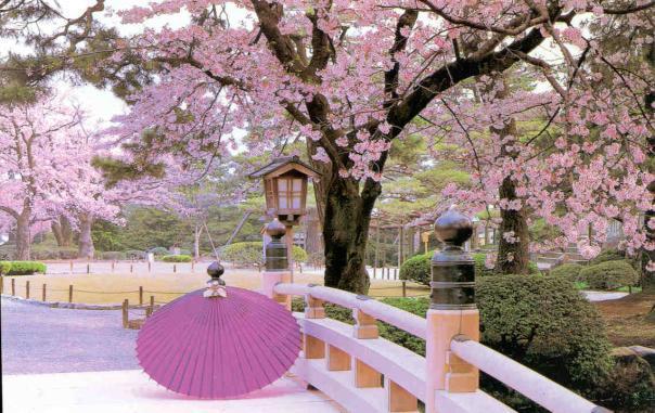 Kỳ thi du học Nhật Bản năm 2012