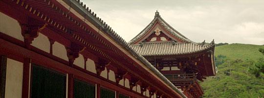 Hội thảo Cơ hội học tập sau đại học ở Nhật Bản