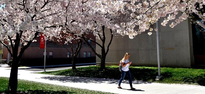 Du học Mỹ tại đại học Sacred Heart