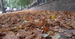 Du học với nỗi nhớ một mùa thu Hà Nội