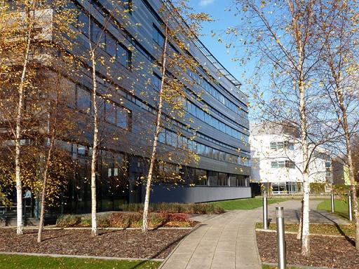 Cơ hội việc làm và thực tập hưởng lương tại đại học Anglia Ruskin