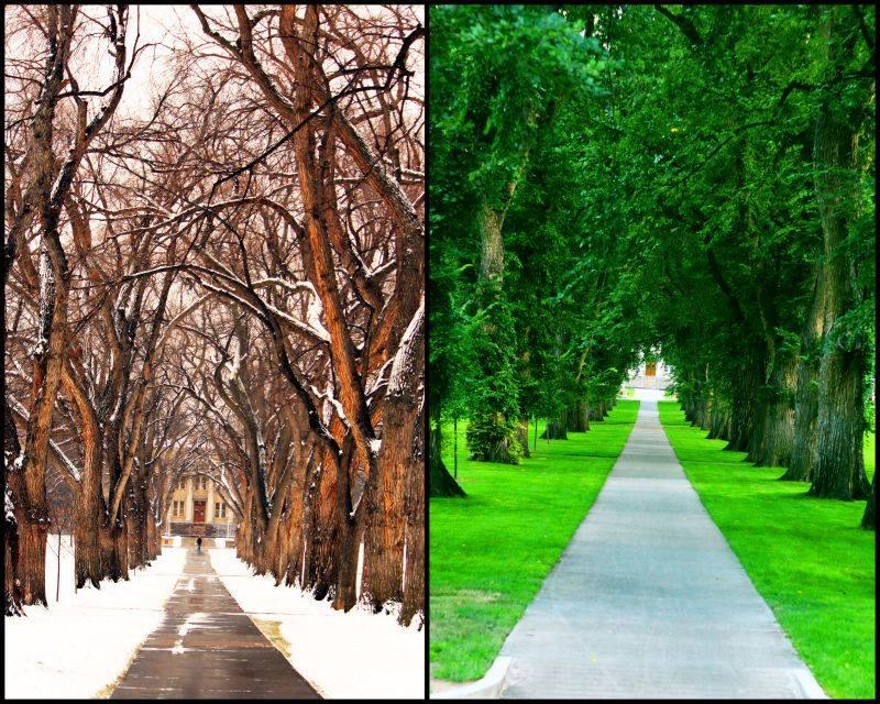 Du học Mỹ 2014 cơ hội học tập tại đại học Colorado State