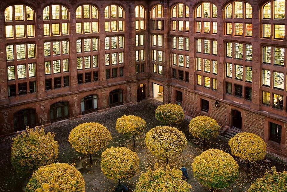 Heidelberg Universität