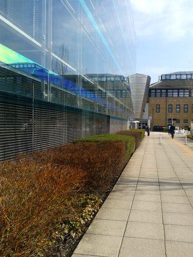 1 góc trường đại học Anglia Ruskin