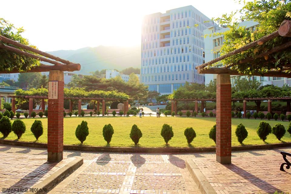 Đại học quốc gia Busan – trái tim của thành phố cảng