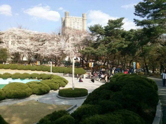 Trường Đại Học KyungHee - TOP 1%