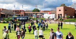 Ngôi sao sáng ở Tây Úc – đại học Curtin