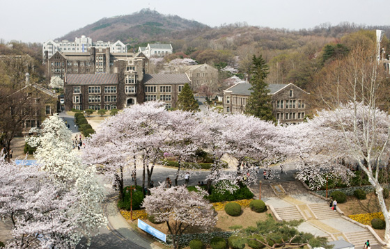 photo_yonsei