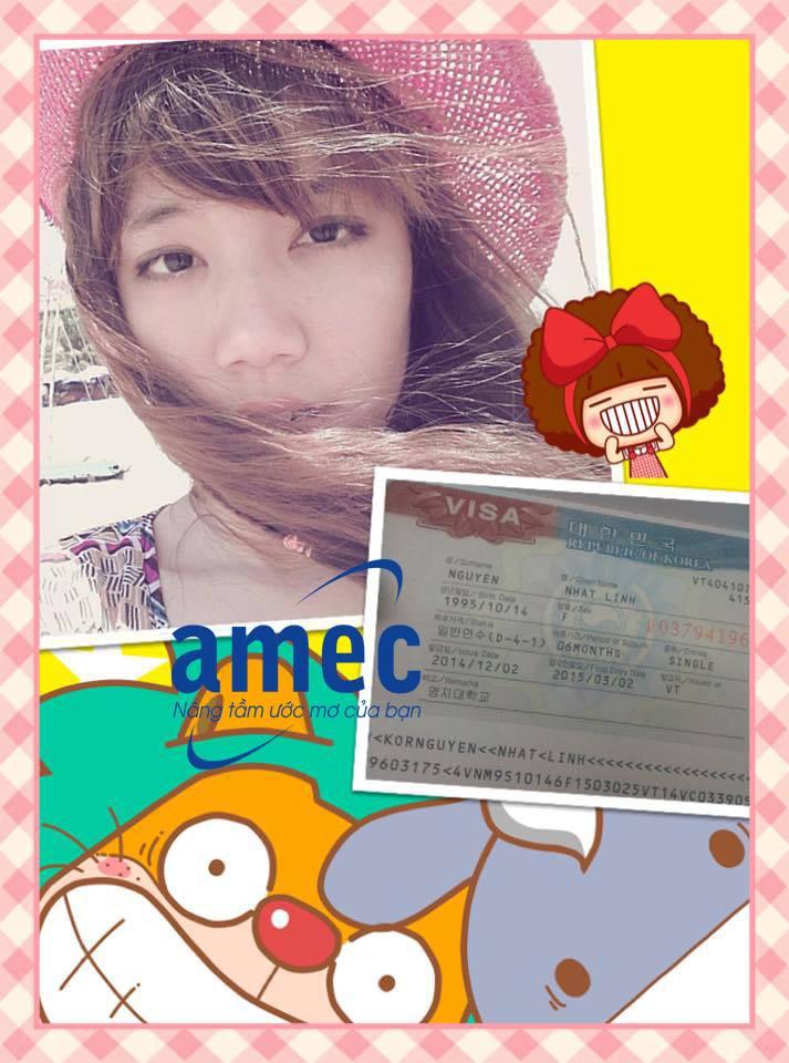 visa Hàn