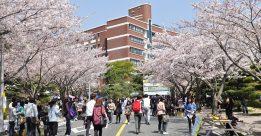 Bạn đã biết chi phí du học Hàn Quốc?
