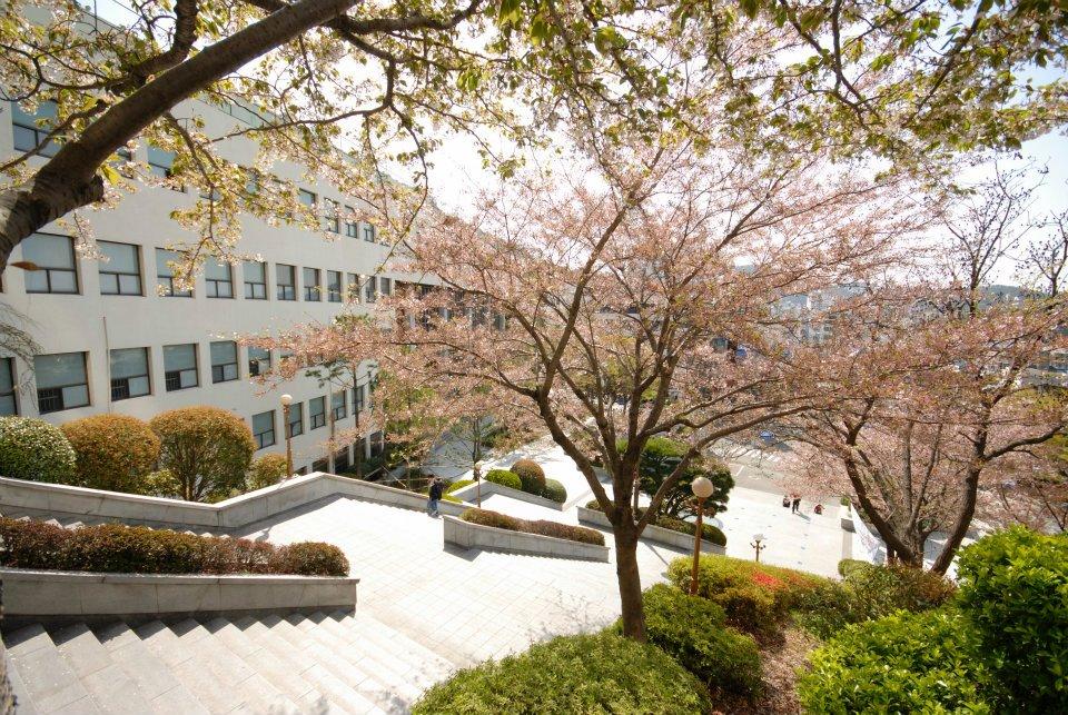 Bạn có biết về khóa học tiếng tại trường đại học xuất sắc của Hàn Quốc