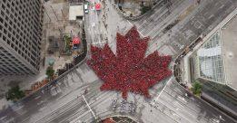 Định hướng mới nhất 2017 định cư Canada bằng con đường du học