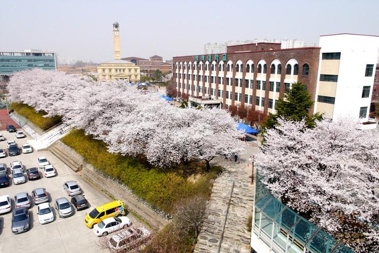 Đại học Pyeongtaek trường đại học tổng hợp lâu đời tại Hàn Quốc