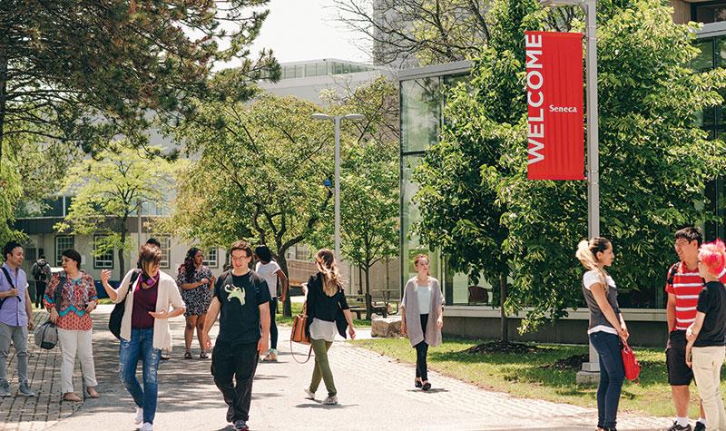 Bạn đã biết gì về chương trình Co-op Canada tại cao đẳng Seneca