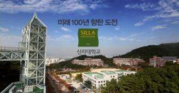 Visa thẳng du học Hàn Quốc 2018 với đại học Silla