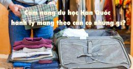 Hành lý Du học Hàn Quốc gồm những gì?