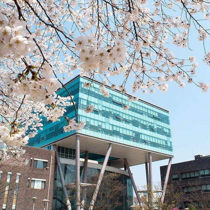 Ký túc xá trường Nữ Sinh Seoul mang đến cuộc sống tiện nghi và hiện đại cho du học sinh