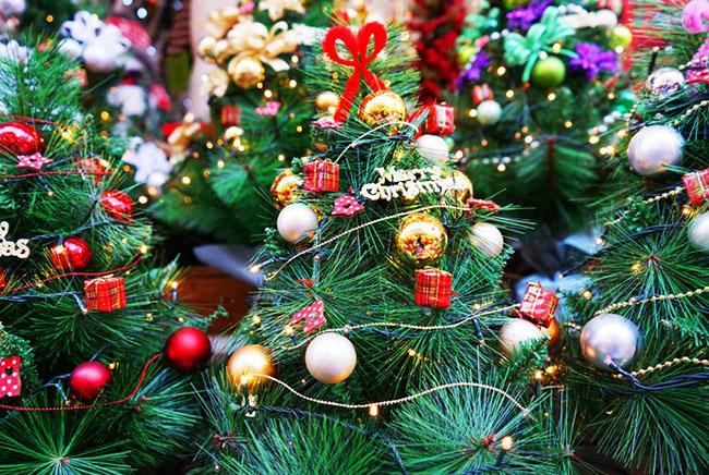 Cây thông Noel không thể thiếu vào dịp Giáng sinh