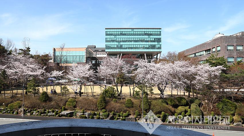 Đại học nữ sinh Seoul