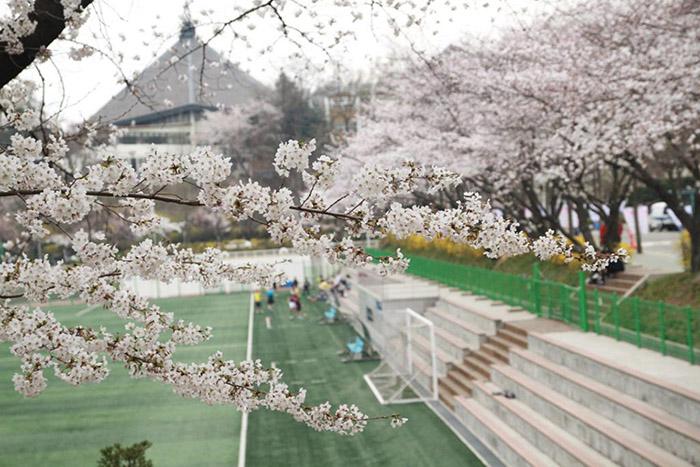 Sân vận động trường đại học Ajou